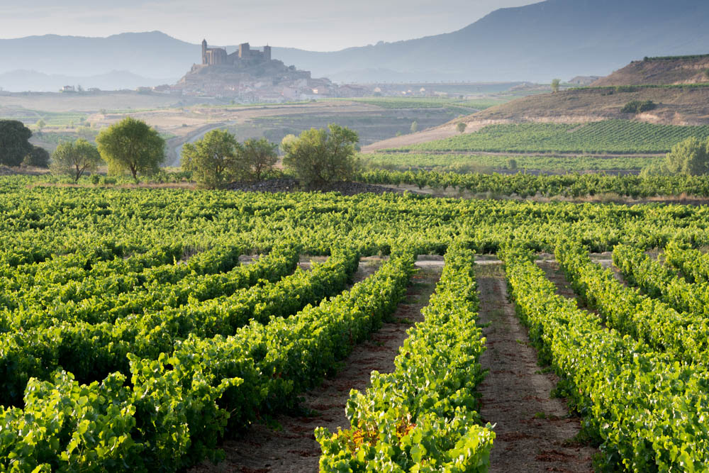 Vin från Rioja