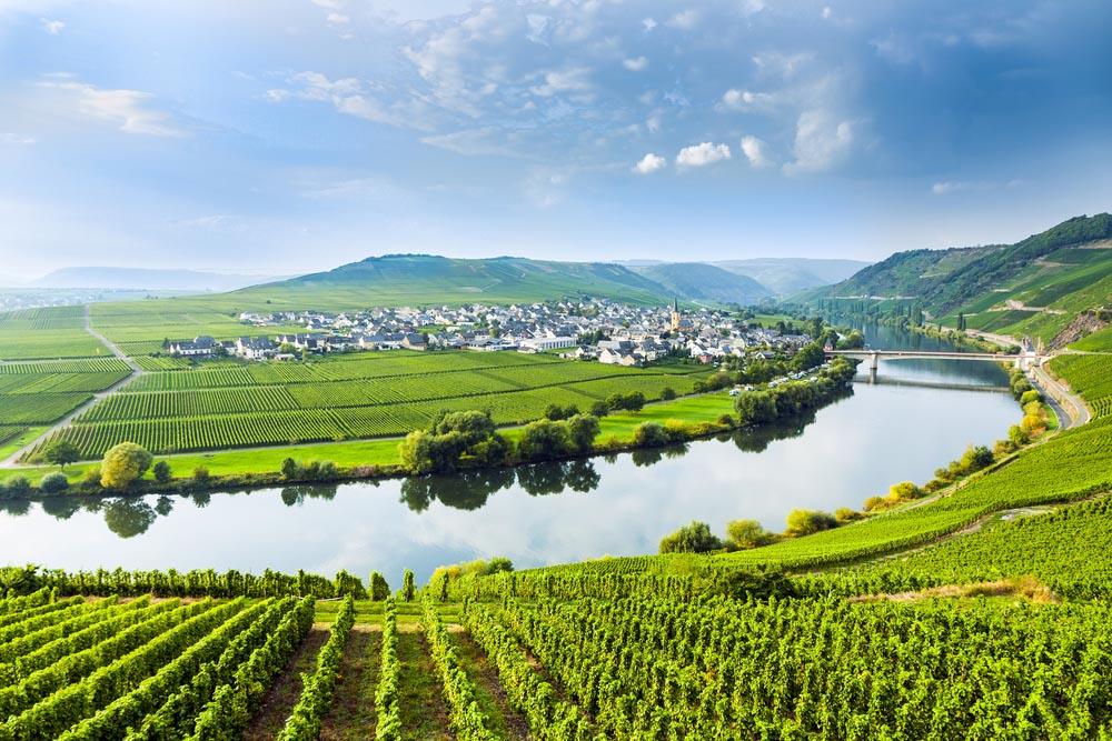 Vin från Mosel