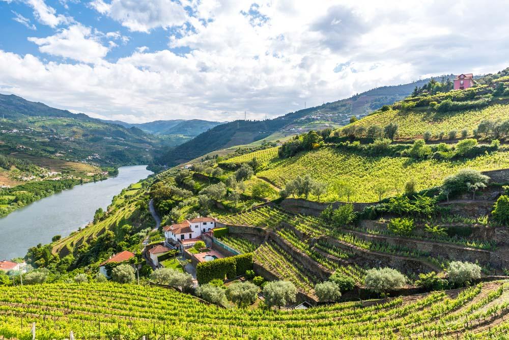 Vin från Porto
